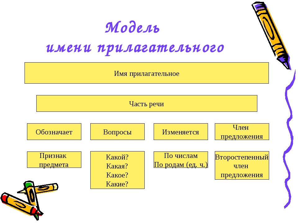 Модель имени прилагательного Имя прилагательное Часть речи Обозначает Вопросы...