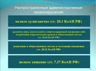 Распространенные административные правонарушения мелкое хулиганство (ст. 20.1