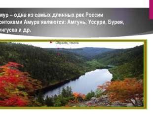 Амур – одна из самых длинных рек России Притоками Амура являются: Амгунь, Усс