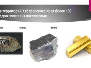 На территории Хабаровского края более 100 видов полезных ископаемых олово сви