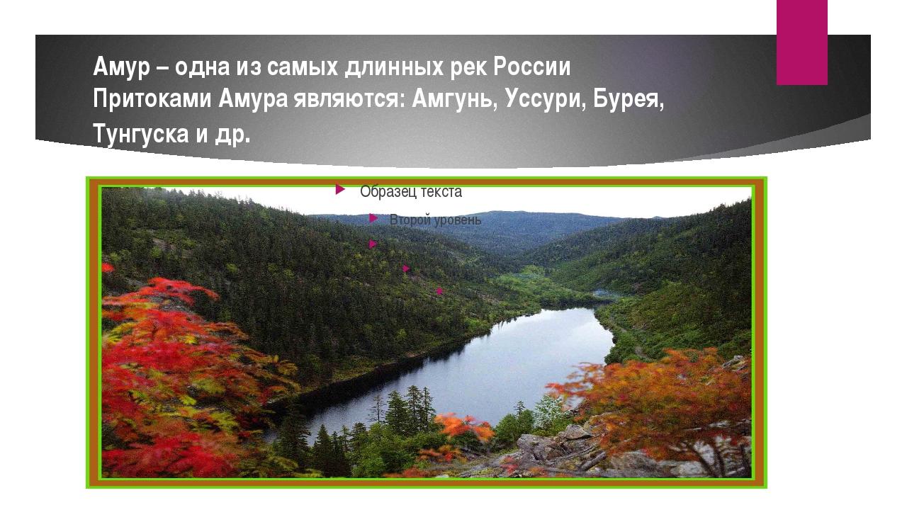 Амур – одна из самых длинных рек России Притоками Амура являются: Амгунь, Усс...