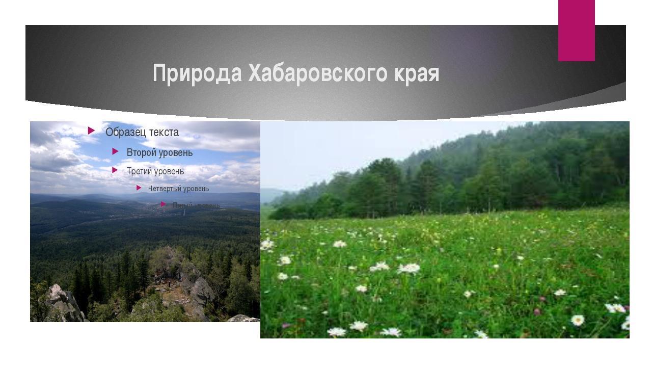 Природа Хабаровского края