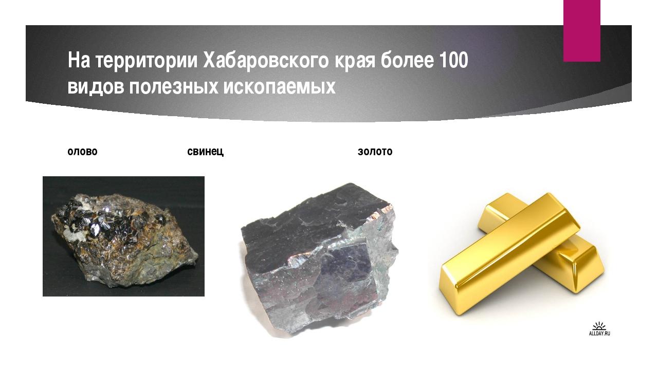 На территории Хабаровского края более 100 видов полезных ископаемых олово сви...