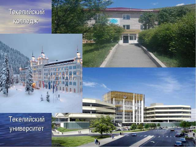 Текелийский колледж Текелийский университет