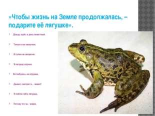 «Чтобы жизнь на Земле продолжалась, – подарите её лягушке». Дождь идёт, и ден