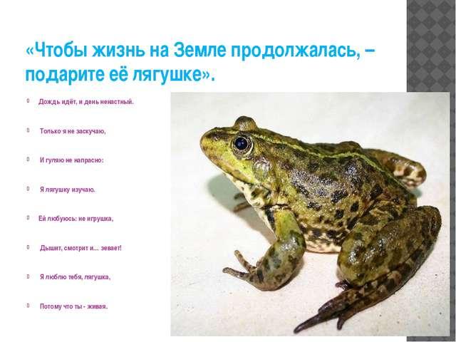 «Чтобы жизнь на Земле продолжалась, – подарите её лягушке». Дождь идёт, и ден...