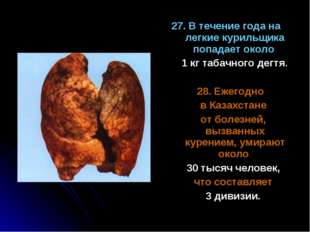27. В течение года на легкие курильщика попадает около 1 кг табачного дегтя.