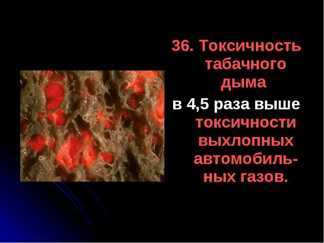 36. Токсичность табачного дыма в 4,5 раза выше токсичности выхлопных автомоби...