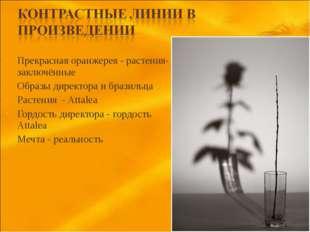 Прекрасная оранжерея - растения-заключённые Образы директора и бразильца Раст