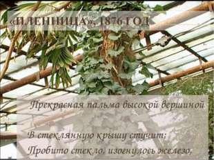 Прекрасная пальма высокой вершиной В стеклянную крышу стучит; Пробито стекло