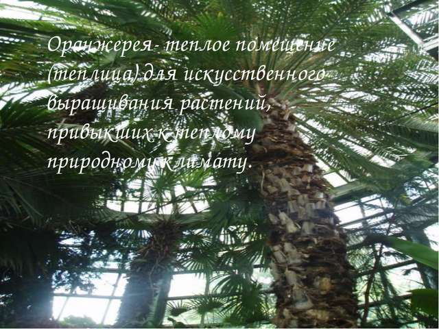 Оранжерея- теплое помещение (теплица) для искусственного выращивания растений...