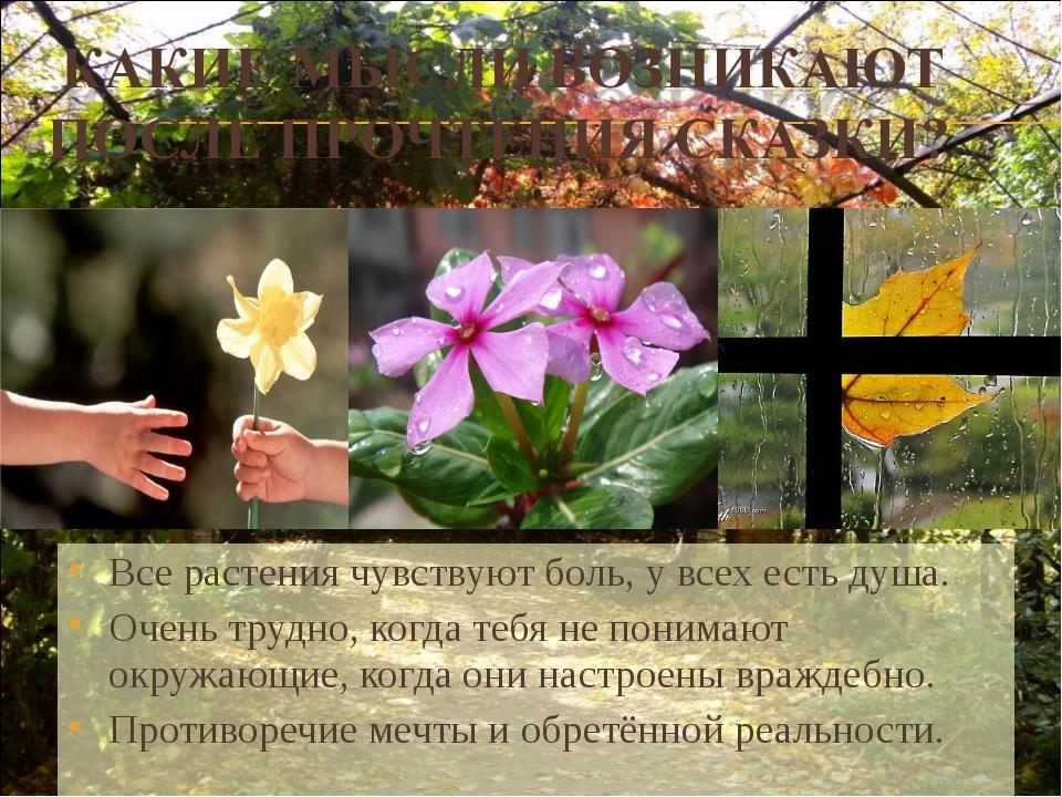 Все растения чувствуют боль, у всех есть душа. Очень трудно, когда тебя не по...