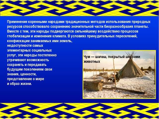 Применение коренными народами традиционных методов использования природных ре...