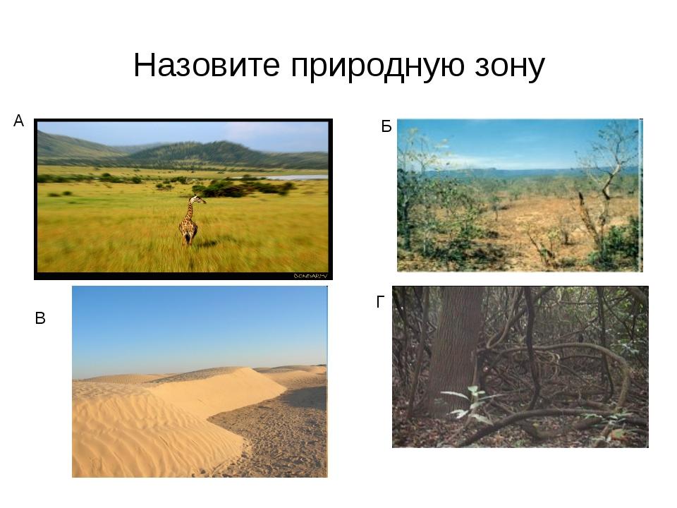Назовите природную зону А Б Г В