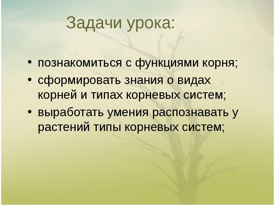 Задачи урока: познакомиться с функциями корня; сформировать знания о видах ко...