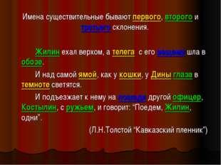 Имена существительные бывают первого, второго и третьего склонения. Жилин е
