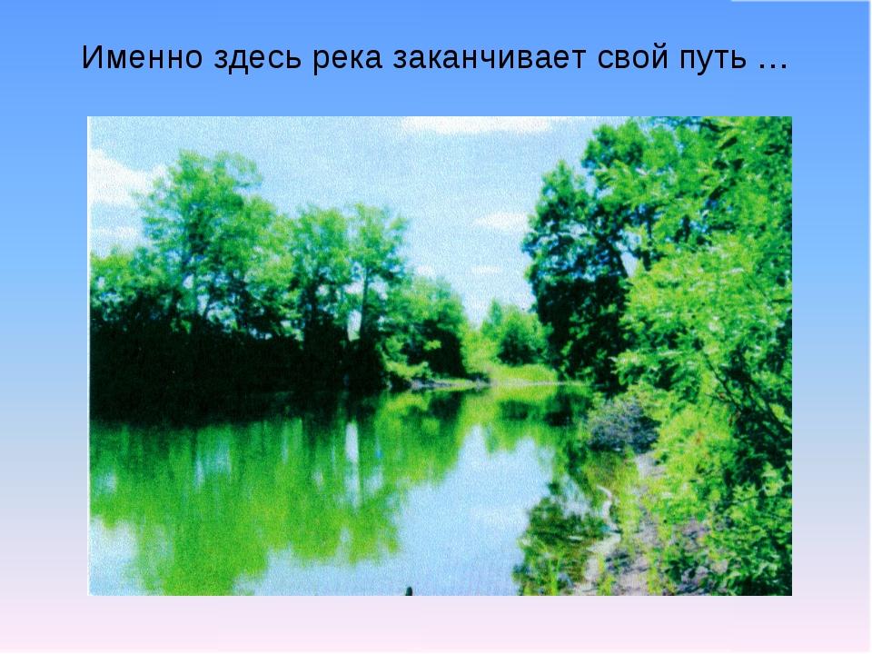 Именно здесь река заканчивает свой путь …