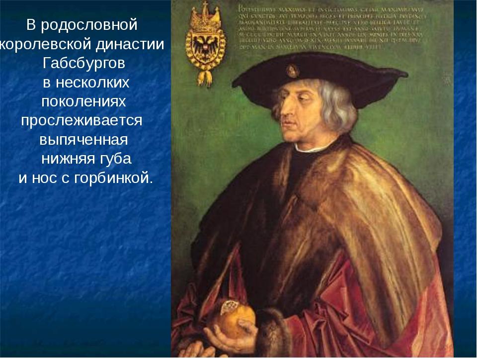 В родословной королевской династии Габсбургов в несколких поколениях прослежи...