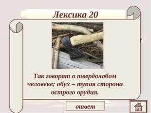 Лексика 20 «Не наше холопье дело разбирать барские воли, а , ей – богу, напра