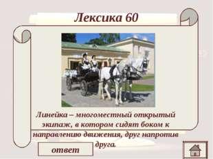 Лексика 60 «…но князь извинился, указывая на свои бархатные сапоги и шутя над
