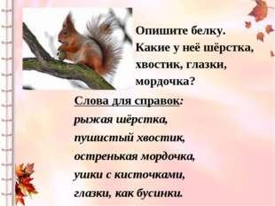 Слова для справок: рыжая шёрстка, пушистый хвостик, остренькая мордочка, ушки