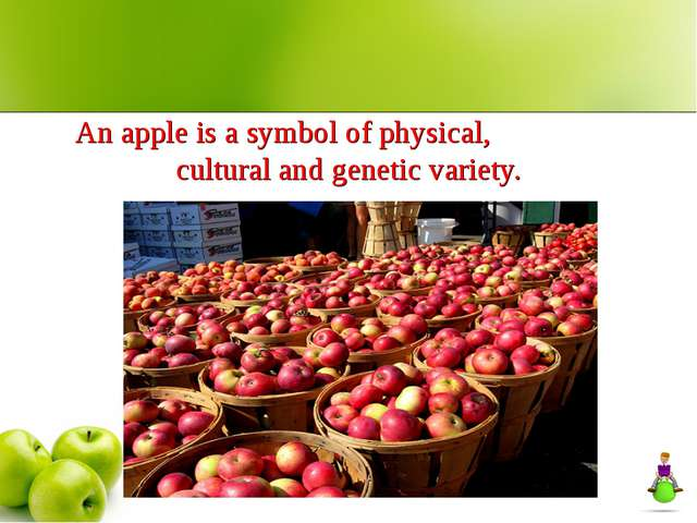 An apple is a symbol of physical, cultural and genetic variety.