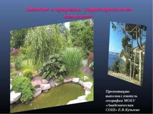 Презентацию выполнил учитель географии МОБУ «Академическая СОШ» Е.В.Кузьмин