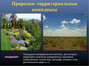 Природный географический комплекс, для которого характерно сочетание определе