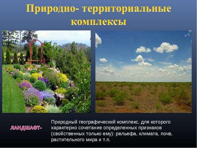 Природный географический комплекс, для которого характерно сочетание определе...