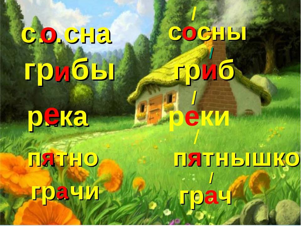 c…сна сосны / о гр..бы гриб / и р..ка реки / е п..тно пятнышко / я гр..чи гра...