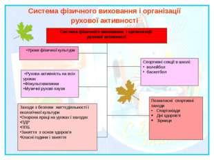 Система фізичного виховання і організації рухової активності Система фізичног