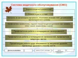 Система медичного обслуговування (СМО) Ведення медичної документації Планові