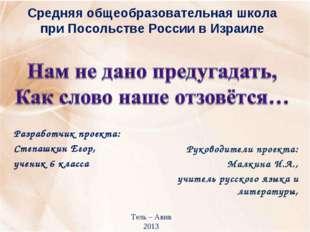 Средняя общеобразовательная школа при Посольстве России в Израиле Разработчик