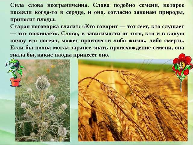 Сила слова неограниченна. Слово подобно семени, которое посеяли когда-то в се...