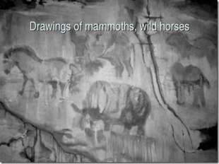 Drawings of mammoths, wild horses