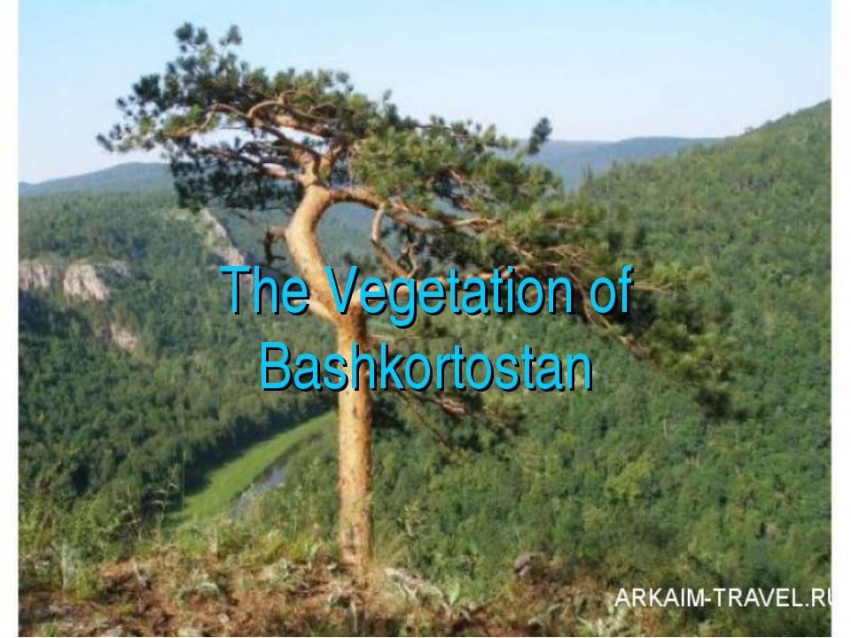 The Vegetation of Bashkortostan