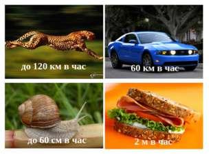 до 120 км в час 60 км в час до 60 см в час 2 м в час