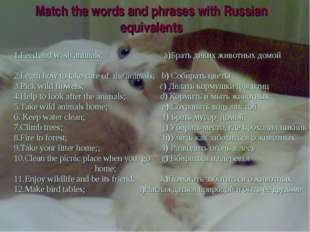 Match the words and phrases with Russian equivalents 1.Feed and wash animals;