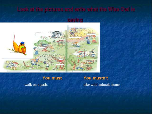 Look at the pictures and write what the Wise Owl is saying You must	You mustn...