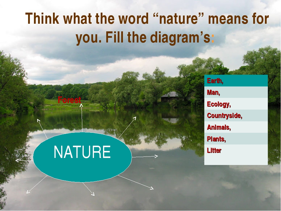 "Think what the word ""nature"" means for you. Fill the diagram's: NATURE Forest..."