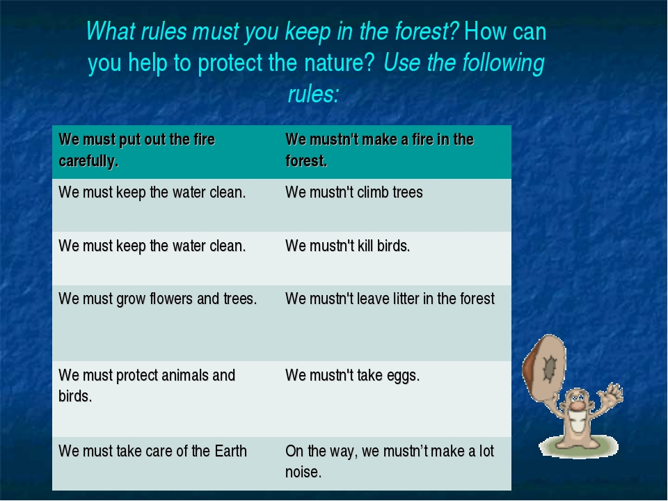 What rules must you keep in the forest? How can you help to protect the natur...