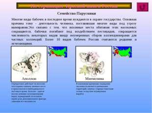 По страницам Красной книги России Многие виды бабочек в последнее время нужда