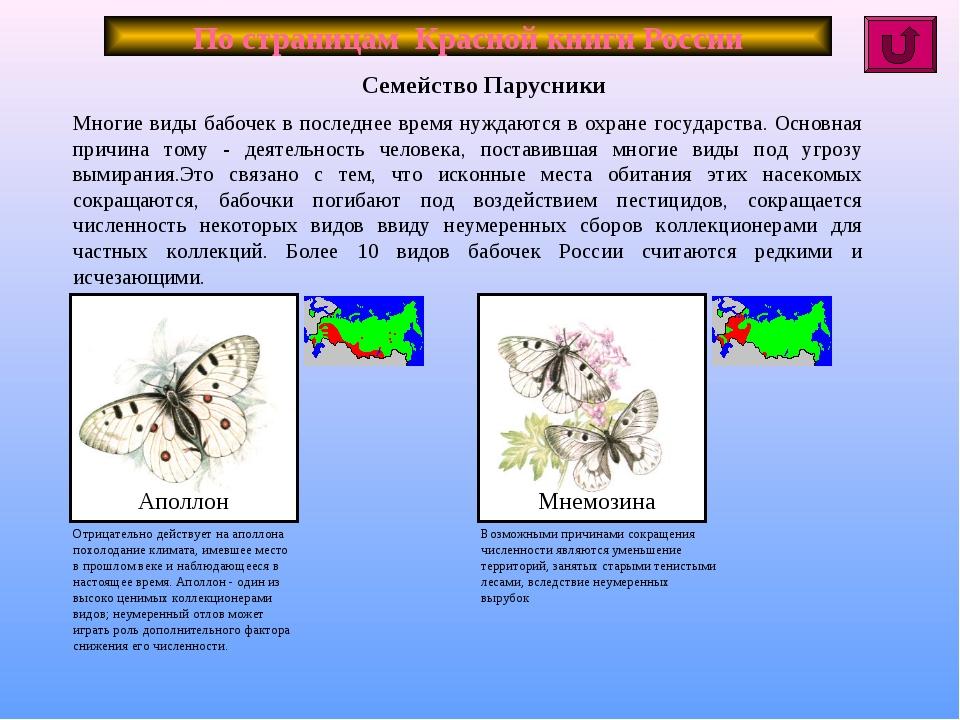 По страницам Красной книги России Многие виды бабочек в последнее время нужда...