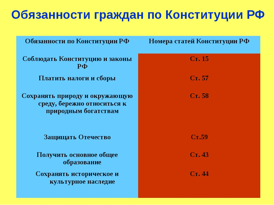 Обязанности граждан по Конституции РФ