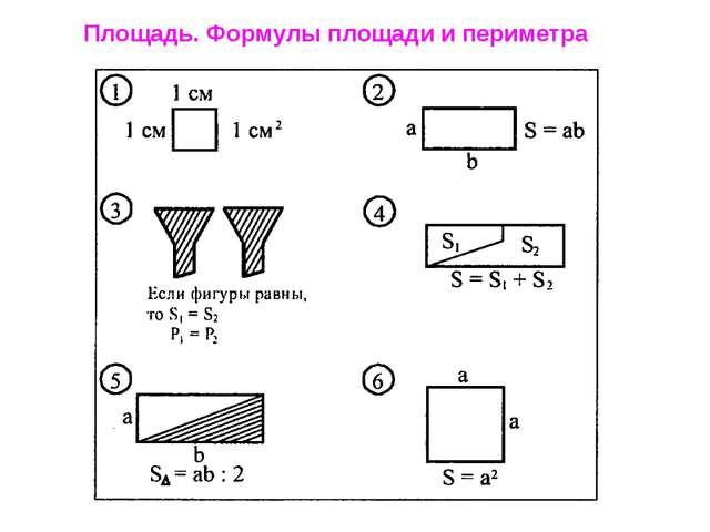 Площадь. Формулы площади и периметра