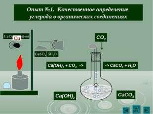 Опыт №1. Качественное определение углерода в органических соединениях CO2 Ca(