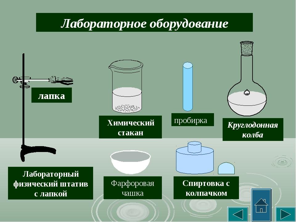 Лабораторное оборудование Лабораторный физический штатив с лапкой лапка Химич...