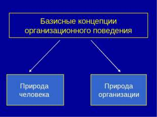 Базисные концепции организационного поведения Природа человека Природа органи