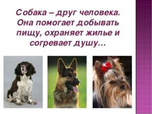 Собака – друг человека. Она помогает добывать пищу, охраняет жилье и согревае