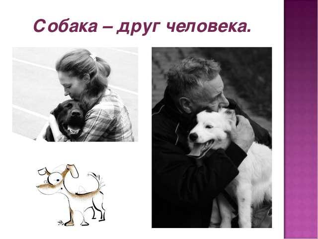 Собака – друг человека.